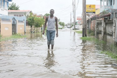 This lone ranger was seen wading through the waters in La Penitence yesterday.