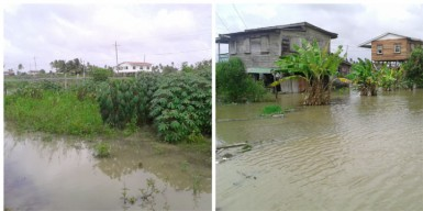 Flooded rice fields, farms and residential areas