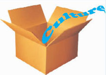 20140104culture box