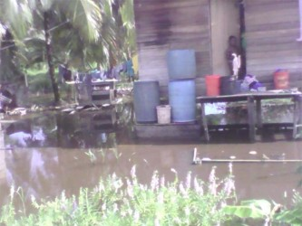 Houses surrounded by water in the Charity Squatting Area.