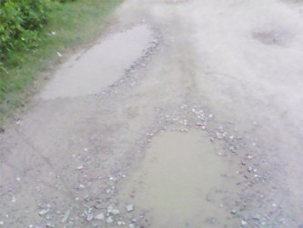 Pot holes in the roads