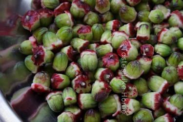 Make pectin with Sorrel seeds (Photo by Cynthia Nelson)