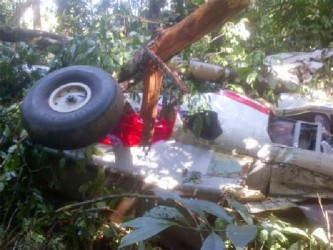 The wreckage of the TGA plane that crashed in the Mazaruni jungle on Saturday (photo courtesy of newssourcegy).
