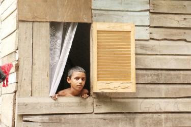 A boy looks through his window