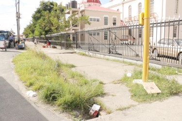 The weed-filled  parapet on Hadfield Street. The Speaker of the National Assembly, Raphael Trotman on Saturday complained about conditions around Parliament.