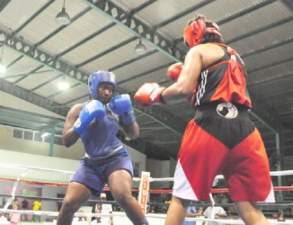 Theresa London in action against Trinidad's Chimere Taylor. The local in blue took home the best female boxer award following her unanimous victory over her opponent.