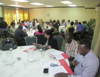 The consultation at Cara Lodge on the European Union's Sanitary and Phyto-sanitary project for the region. (GINA photo)