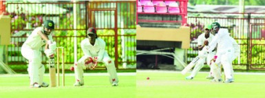 Veerasammy Permaul (right) and Devendra Bishoo offered resistance down the order during their 29-run partnership.