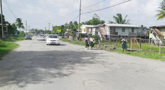 A deplorable section of the East Bank Berbice road