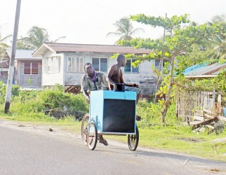 Hitching a ride today on a music cart along the Railway Embankment at Good Hope, East Coast Demerara.