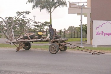This horse cart seemed to have developed a flat tyre outside of the National Cultural Centre.  Cart man and horse seemed to have abandoned it.