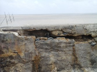 A fissure on the surface of the seawall.