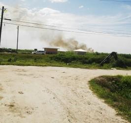 Sugarcane burning in the canefield opposite Belle Vue village