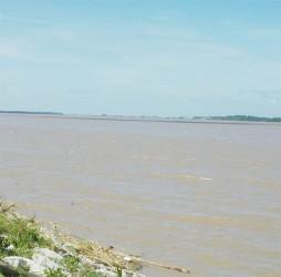 The Demerara River