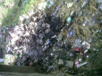 Site where residents burn garbage