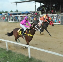 Ellle's Vision from the K. Jagdeo Stables will Paul Delph in the stirrups crosses the line ahead of CP Got Even and California Strike. (Orlando Charles photo)