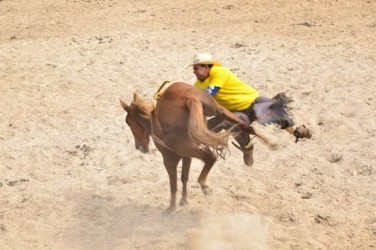 20140421rodeo