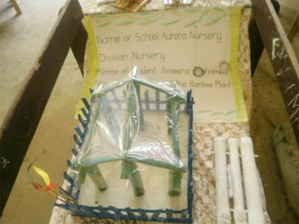 Aurora Nursery School's project was titled: 'The Use of the Bamboo Plant'. It is one of the exhibits at this year's National Science Mathematics and Technology Fair which opened yesterday at the Anna Regina Secondary School, Essequibo Coast.