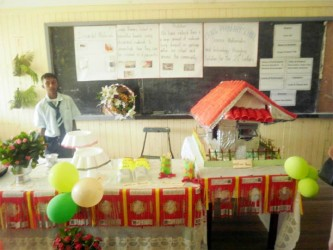 Craig Primary School made decorations from discarded materials to exhibit at this year's  National Science Mathematics and Technology Fair which opened yesterday at the Anna Regina Secondary School, Essequibo Coast.