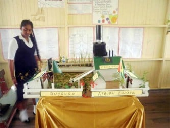 JC Chandisingh Secondary School's project which it took to this year's National Science Mathematics and Technology Fair was titled 'Activated Carbon Scrubber.'
