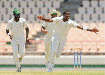 Damion Jacobs celebrates the fall of another Windward Islands wicket during his 8-45 yesterday at the Beausejour Cricket ground in St Lucia.