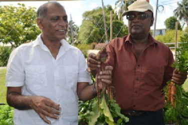 Minister of Agriculture Dr Leslie Ramsammy (left) and Dr Oudho Homenauth, NAREI's Chief Executive Officer with the beets and carrots. (Ministry of Agriculture photo)