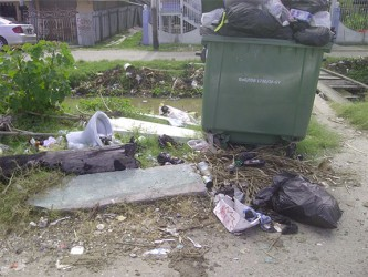 Garbage that Beterverwagting residents say had been there for three weeks