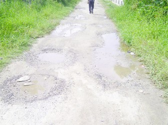 2nd Street Lusignan filled with potholes