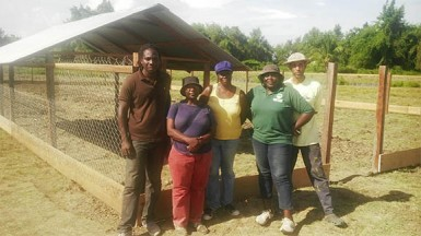 Taking a break: Members of the Mangrove Cooperative in working mode at Golden Grove last week