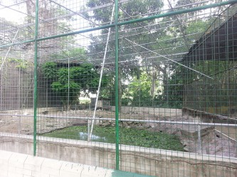 One of the many cages in the zoo