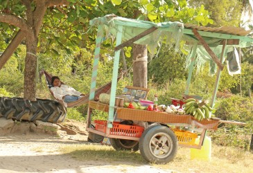 Resting in her hammock while she worked, this Victoria vendor kept an eye on her vegetable and DVD stalls yesterday.