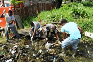 Volunteers in the trenches during the clean-up campaign