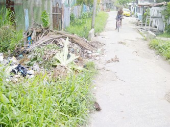 Farther down Post Office Street where residents dump litter in a bush cluttered drain