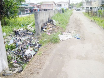 Sarren Street, deplorable, filled with bush and garbage.