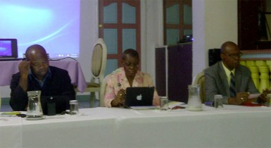 CDB Workshop panel: From left are Patrick Chinedu, Assistant Chief Education Officer; Dr Idamay Denny, Portfolio Manager, Social Sector Division, CDB; and M Stephen Lawrence, Operations Officer, Social Sector Division, CDB.
