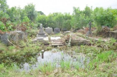 Vegetation overruns the waterlogged tombs within the Le Repentir Cemetery. (Government Information Agency photo)