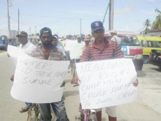 Protesting rice farmers at the Anna Regina High Bridge