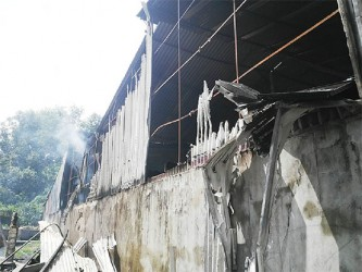 A section of the chowmein factory where the fire started.