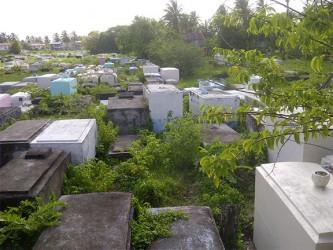 The bush engulfed Victoria Cemetery