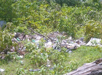 A dumpsite in an empty lot in Nabaclis