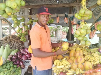 Richard Hinds, son of Carlotta Hinds, at the stall where he and his mother sell fruit