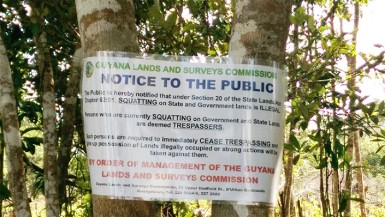 GLSC has told the squatters that they are illegally occupying state lands and must remove themselves (Photo by Chevy Devonish)