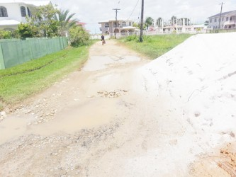 This road appears to have been patched with sand and loam in an attempt to fill the potholes.