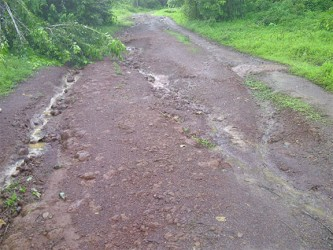 The state of the road leading into Barabina