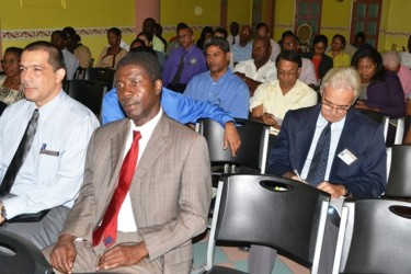 Participants at the Ministry of Agriculture's awareness seminar on its agriculture strategy 2013-2020 at the Regency Hotel (GINA photo)