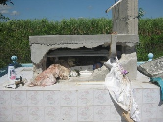 The vandalised tomb of three-month-old Yadram Rameshant