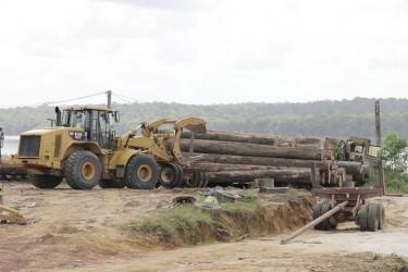One of Vaitarna's trucks hauling logs at Wineperi
