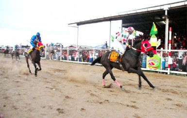 CP Got Even with Paul Delph in the stirrups wins the feature C1 and Lower event of the eighth annual Guyana Cup yesterday at the Port Mourant Turf Club. (Orlando Charles photo)