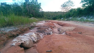 This is part of the road just beyond the Moblissa Creek (Chevy Devonish Photo)
