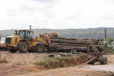 Machinery in operation at Vaitarna's log yard at Wineperu on Tuesday.  The India-based company continues to export logs but is yet to set up its promised processing plant. (Arian Browne photo)